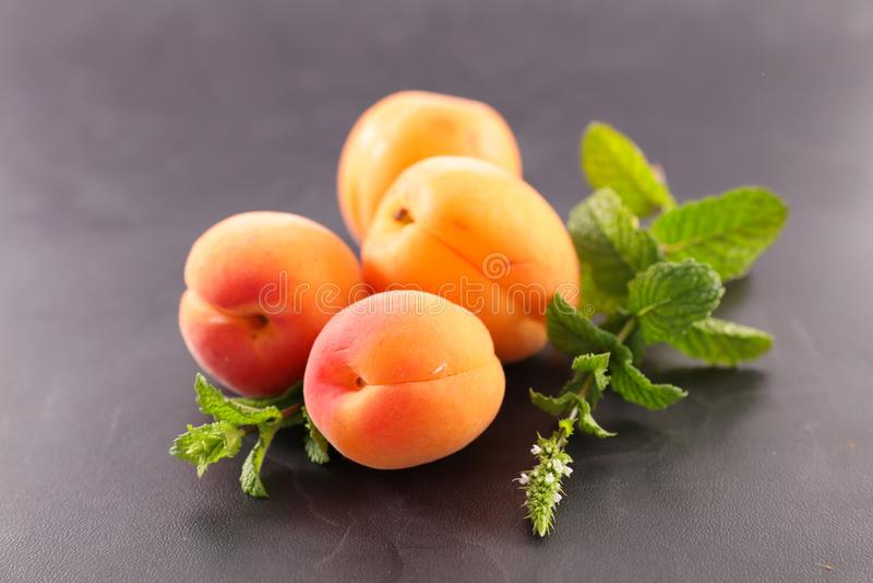 Ingrédient d'abricot et de feuille photographie stock libre de droits