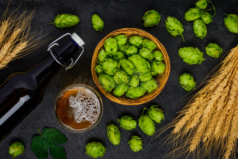 Ingrédients de brassage de bière Houblon et blé photo stock