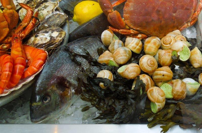 Ingrédients de repas de fruits de mer images stock