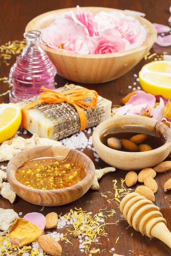 Ingrédients organiques de soins de la peau photo libre de droits
