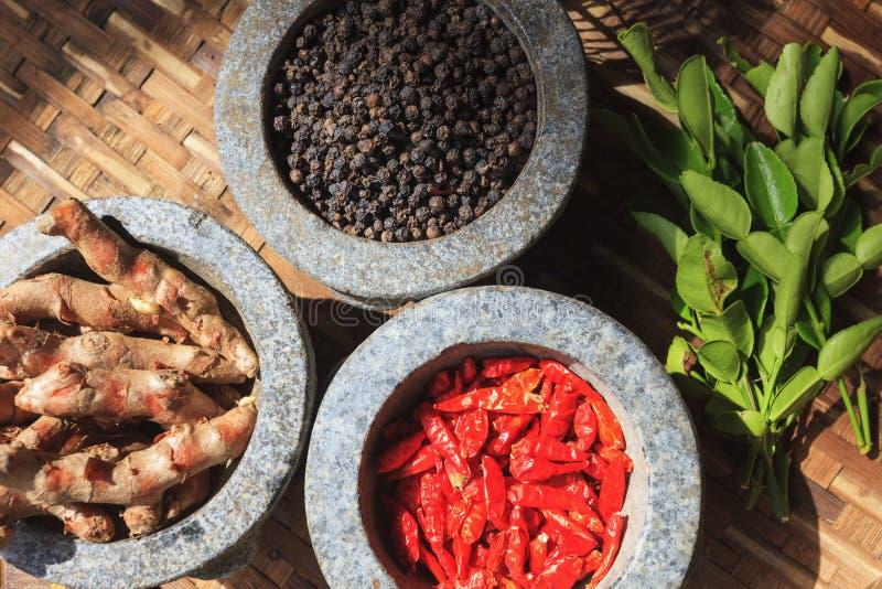 Ingrédients thaïlandais faisant cuire pour TOMYUMKUNG image libre de droits