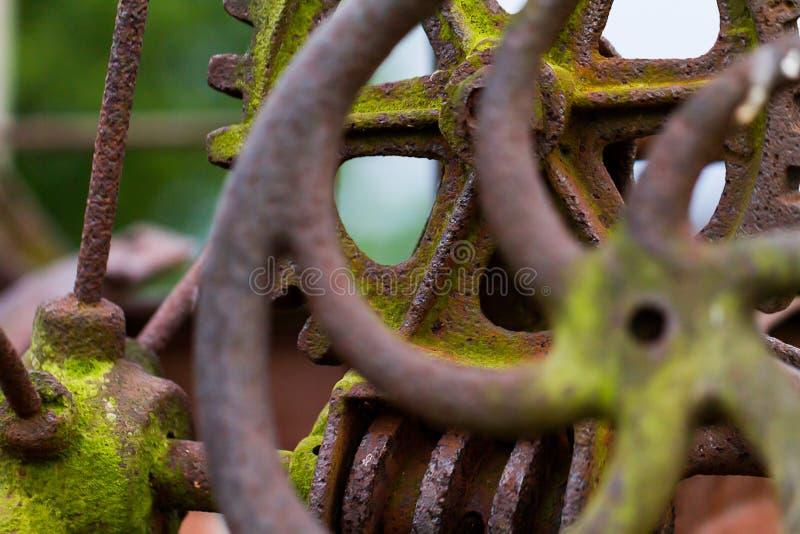 Ingranaggio arrugginito, muscoso ed invecchiato del ferro da un pezzo di attrezzatura d'annata dell'azienda agricola alla macro d fotografie stock libere da diritti