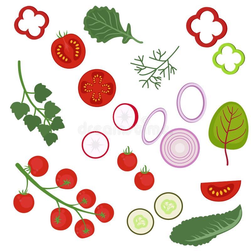 Ingrediënten aan de salade vector illustratie