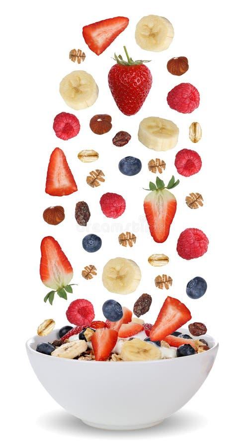 Ingrediënten van fruitmuesli voor ontbijt in kom met vruchten Li royalty-vrije stock fotografie