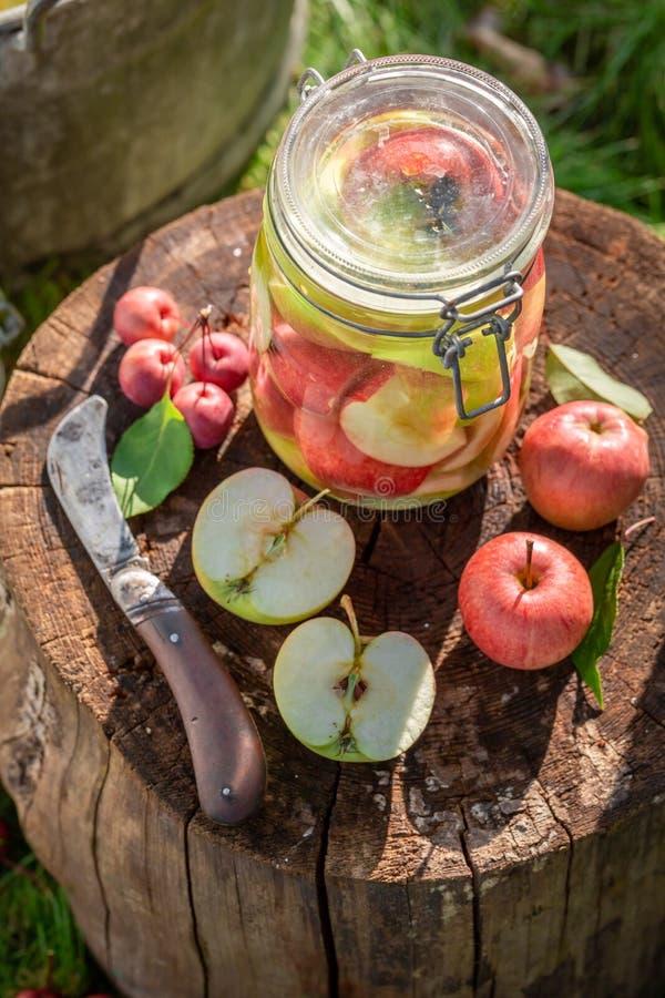 Ingrediënten voor appelencompote in de de zomertuin royalty-vrije stock afbeelding
