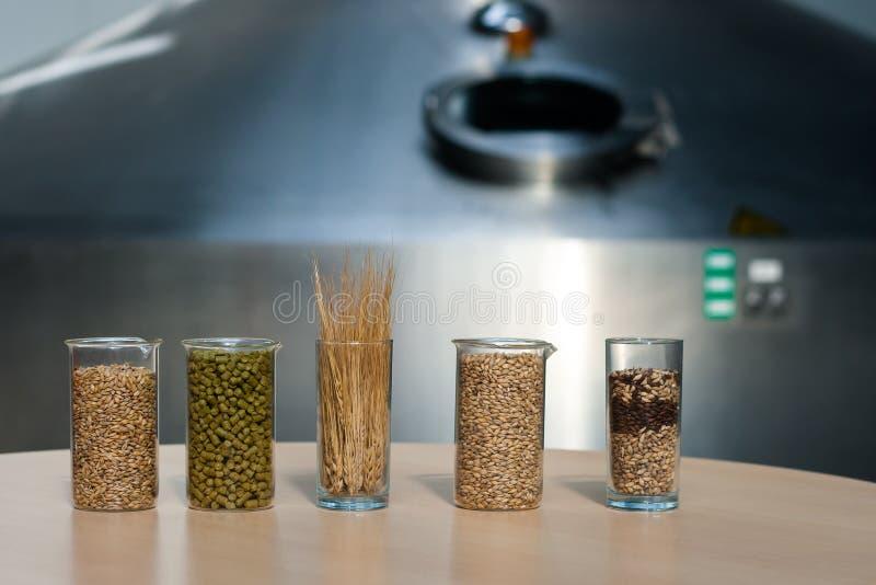 Ingrediënten voor de productie van bier: mout, gist, hop, korrel royalty-vrije stock afbeelding