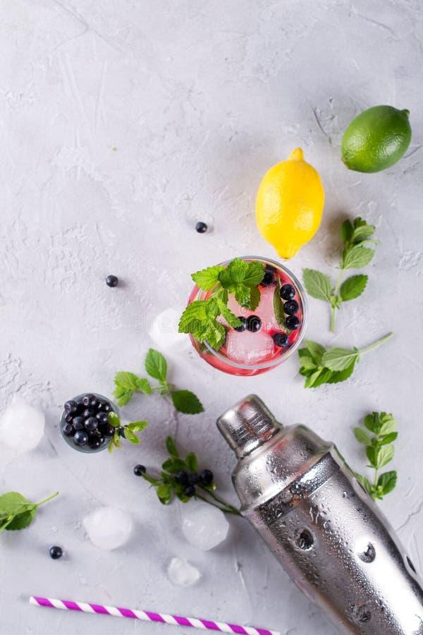 Ingrediënten voor het maken van limonade, Mojito-Cocktails of andere dranken met bosbes op een grijze achtergrond royalty-vrije stock foto's