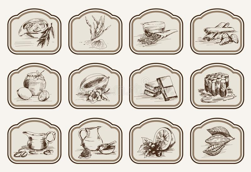 Ingrediënten voor natuurlijke schoonheidsmiddelen royalty-vrije illustratie