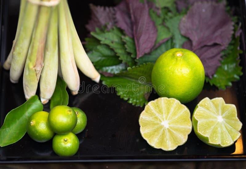Ingrediensbegrepp: Citron citronellolja, perilla arkivfoto