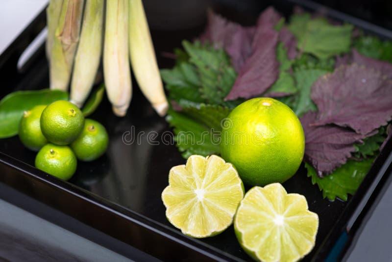 Ingrediensbegrepp: Citron citronellolja, perilla arkivfoton