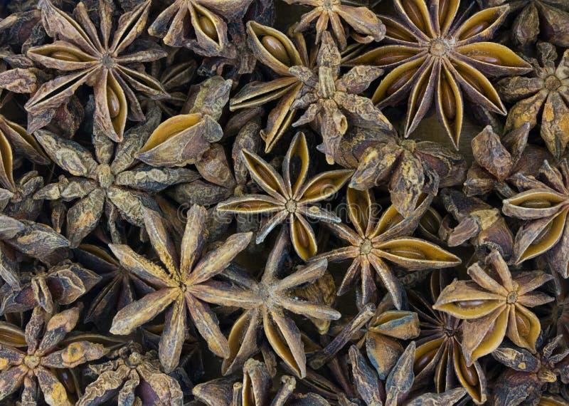 Ingrediensen för stjärnaanis som kryddar orientaliska soppor och ingredienser av det traditionella receptet av en värme, funderad fotografering för bildbyråer