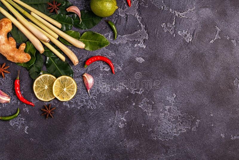 Ingredienser av thailändsk kryddig mat royaltyfri bild