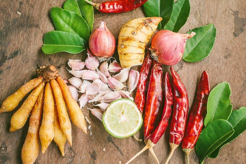 Ingredienser av thailändsk kryddig mat, tom yum arkivfoto