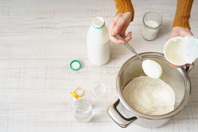 Ingredienser för att laga mat pizza arkivfoto