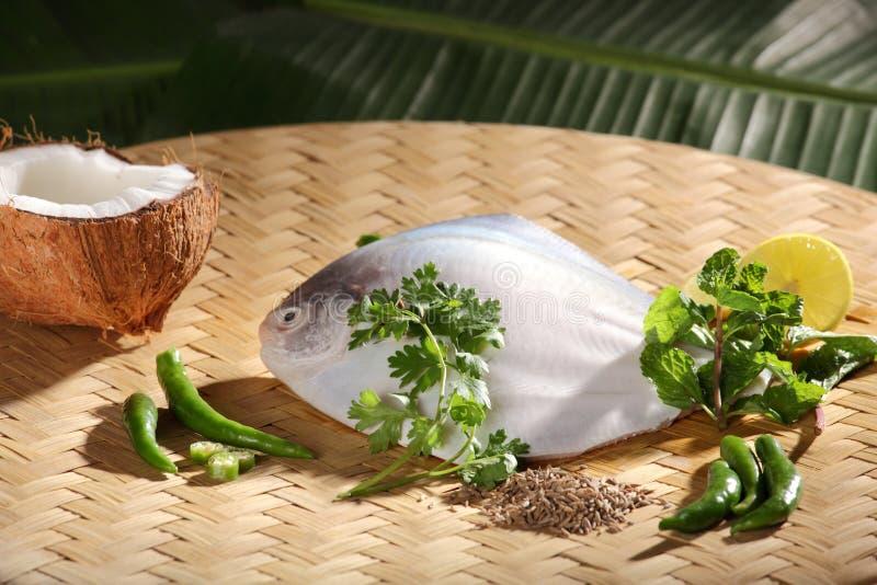 Ingredienser för den bakade/ångade Parsi fisken. arkivbilder