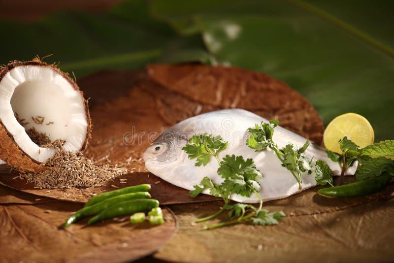 Ingredienser för den baked/ångade Parsi fisken. arkivfoton