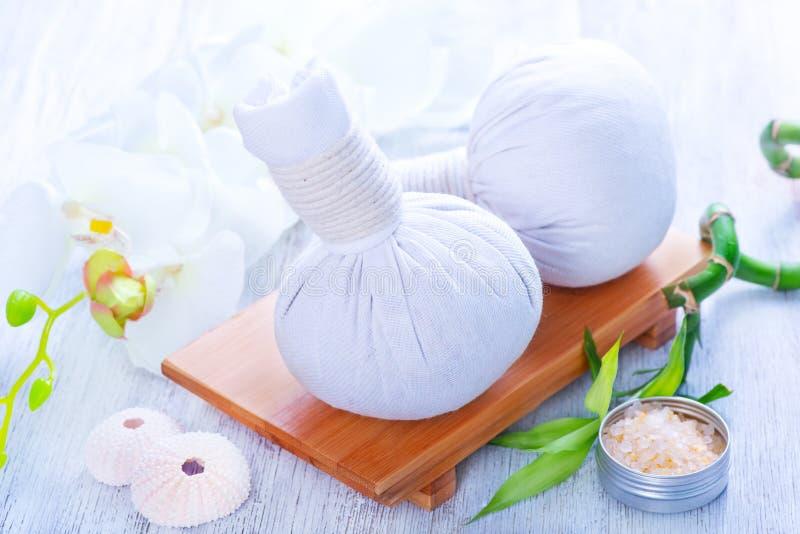 Ingredienser för massage arkivbild