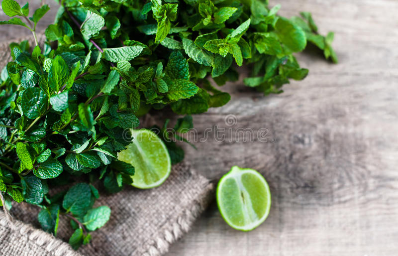 Ingredienser för mojito Ny mintkaramell, limefrukter, socker över trälodisar royaltyfri foto