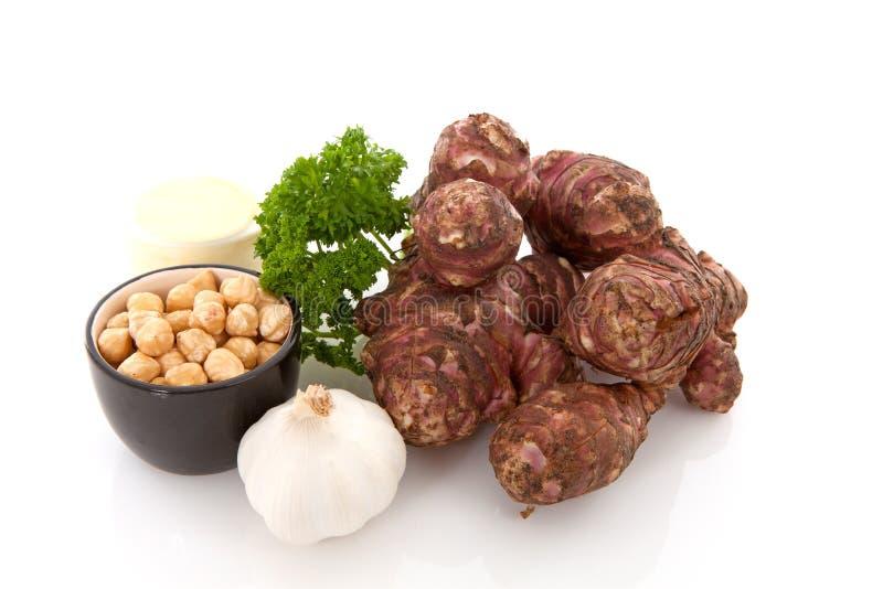 Ingredienser för soppa för Jerusalem kronärtskocka royaltyfria bilder