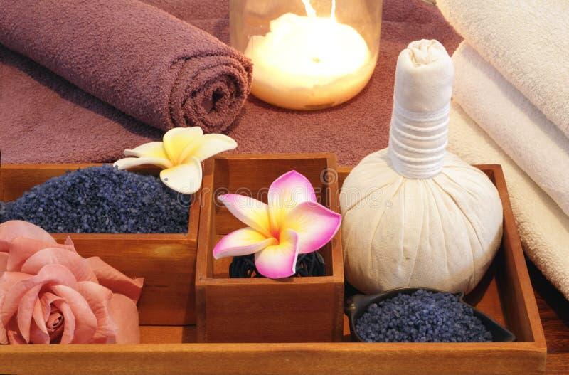 Ingredienser för Spa massagebehandling royaltyfri bild
