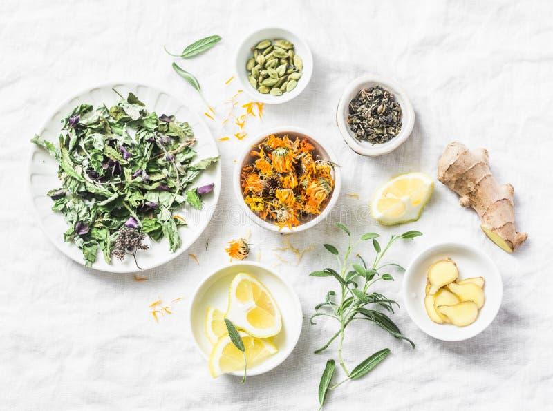 Ingredienser för te för leverdetoxantioxidant på en ljus bakgrund, bästa sikt Torra örter, rotar, blommar för homeopatireceptet f royaltyfri fotografi