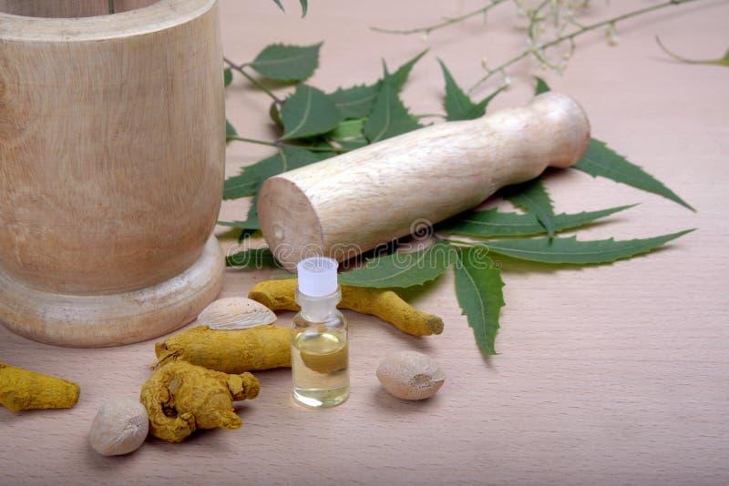 Ingredienser i Ayurvedic medicin royaltyfria bilder