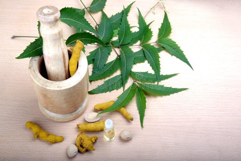 Ingredienser i Ayurvedic medicin på träbakgrund arkivfoto
