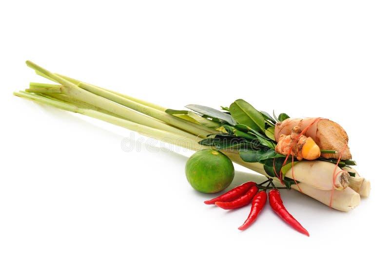Ingrediente de alimento tailandês para Tom yum fotografia de stock