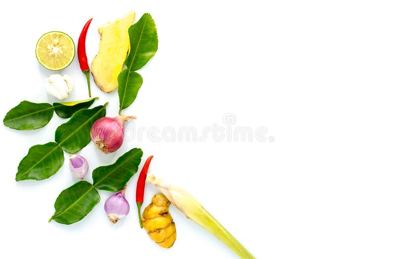 Ingrediente de alimento tailandês para Tom yum no fundo branco com espaço da cópia fotografia de stock