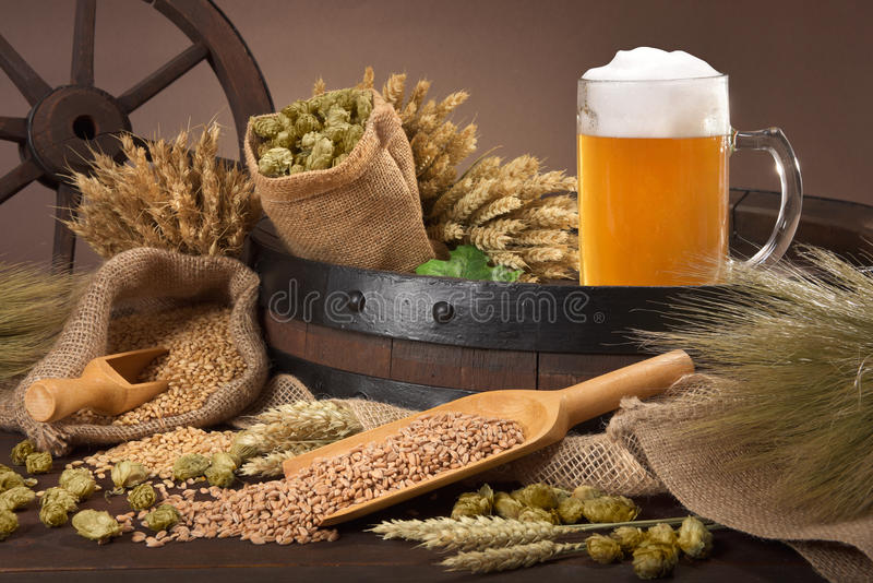 Ingredientes da cerveja fotos de stock royalty free