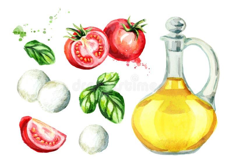 Ingredientes de la ensalada de Caprese fijados Ejemplo dibujado mano de la acuarela, aislado en el fondo blanco libre illustration