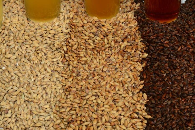 Ingredientes del brebaje casero del grano y de los saltos