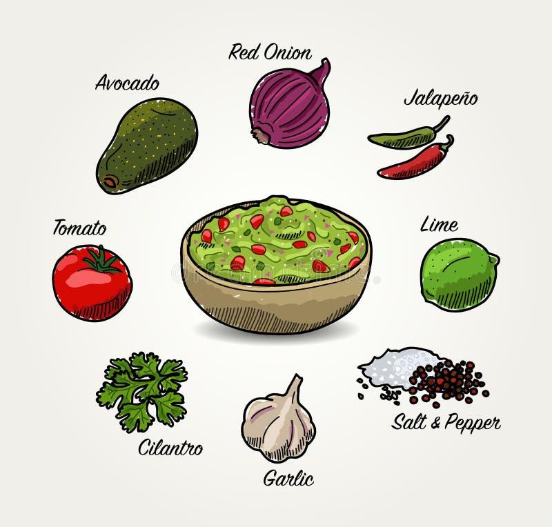 Ingredientes del Guacamole del aguacate del vector stock de ilustración