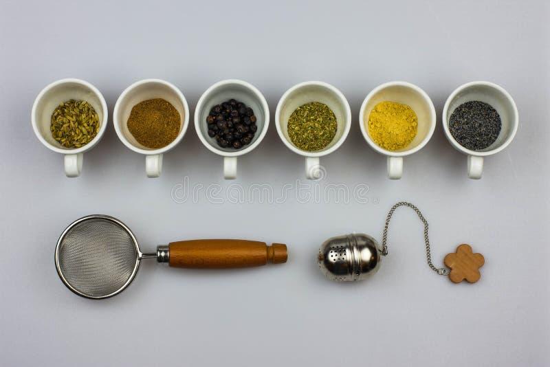 Ingredientes do Tisane com filtros imagens de stock royalty free
