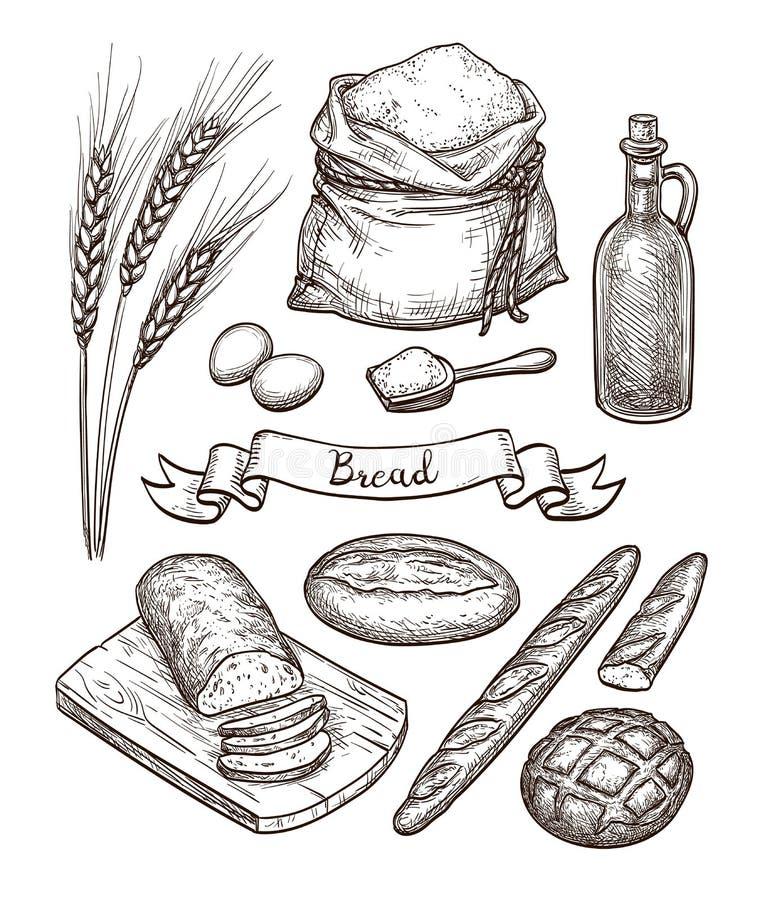 Ingredientes e grupo do pão ilustração do vetor