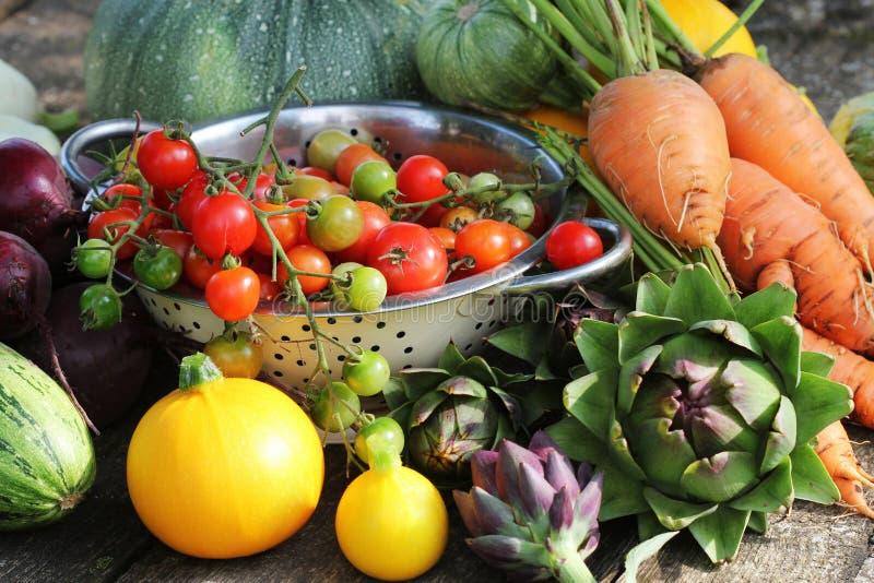 Ingredientes frescos de la verdura cruda para cocinar sano o la ensalada que hace, espacio de la copia Dieta o concepto de la com fotografía de archivo