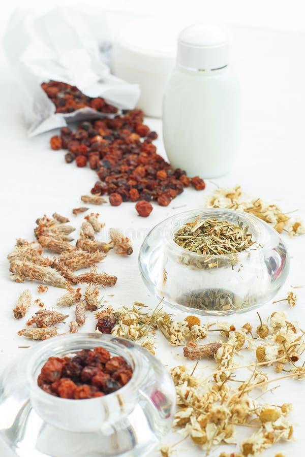 Ingredientes naturais para a preparação das medicinas e dos cosméticos imagens de stock
