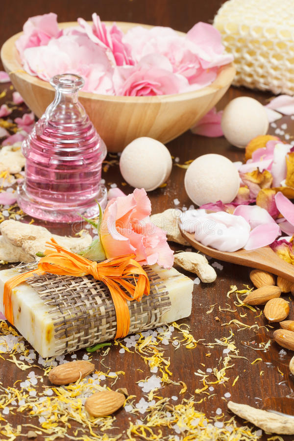 Ingredientes naturales del cuidado de piel del baño y del cuerpo fotografía de archivo
