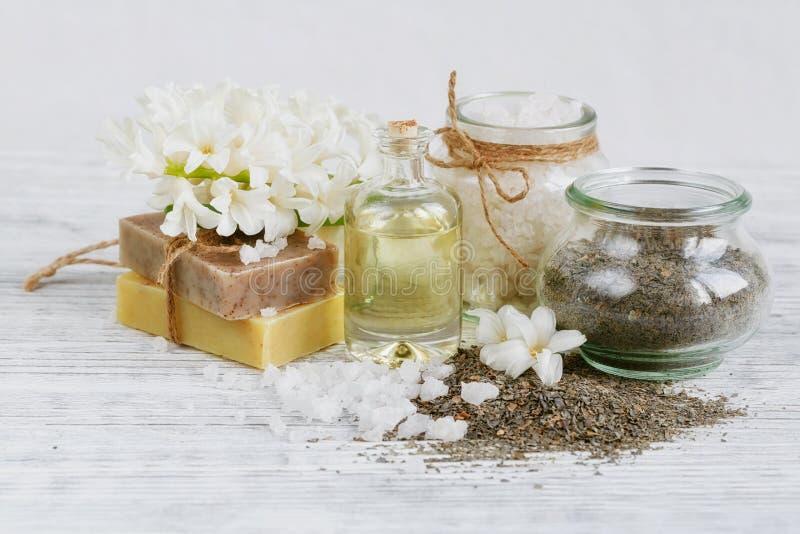 Ingredientes naturales para la máscara hecha en casa del facial y del cuerpo fotos de archivo libres de regalías