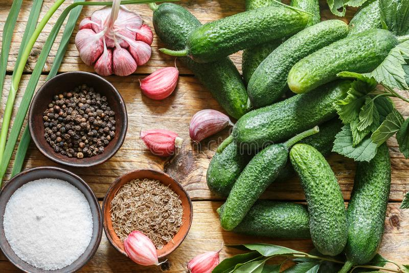 Ingredientes para la preservación en tabla-pepinos, ajo, semilla de eneldo, pimienta, sal, condimentos y especias de madera viejo imagenes de archivo