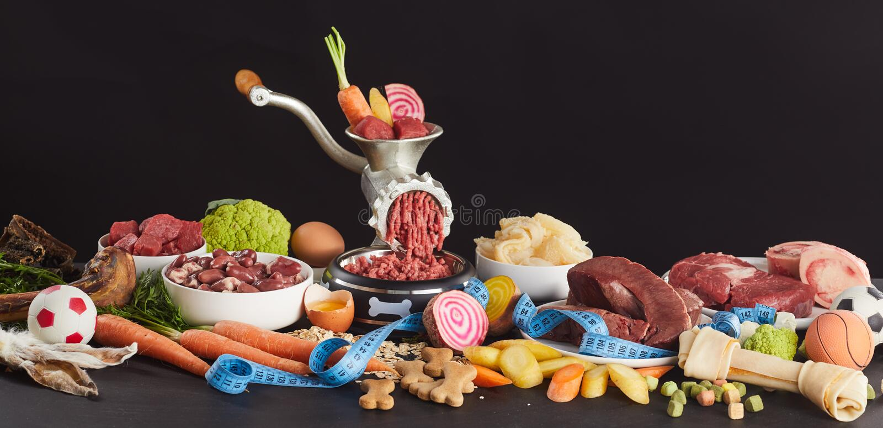 Ingredientes para o alimento de BARF para cães imagem de stock royalty free