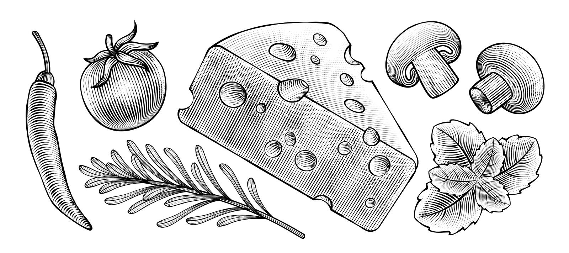 Ingredienti alimentari incisi di stile royalty illustrazione gratis