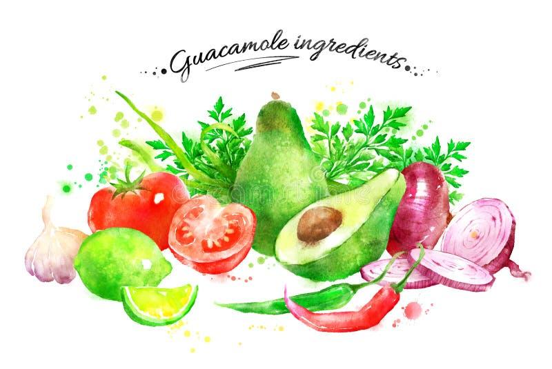 Ingredienti del guacamole illustrazione vettoriale