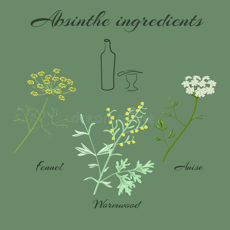 Ingredienti dell'assenzio delle erbe illustrazione di stock