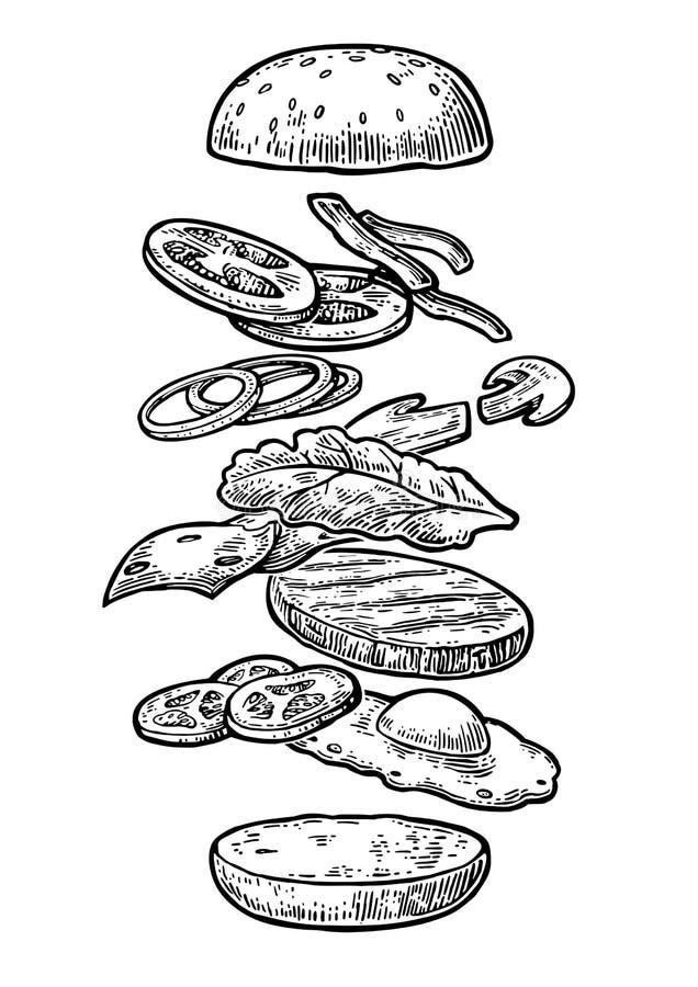 Ingredienti dell'hamburger su fondo bianco illustrazione vettoriale