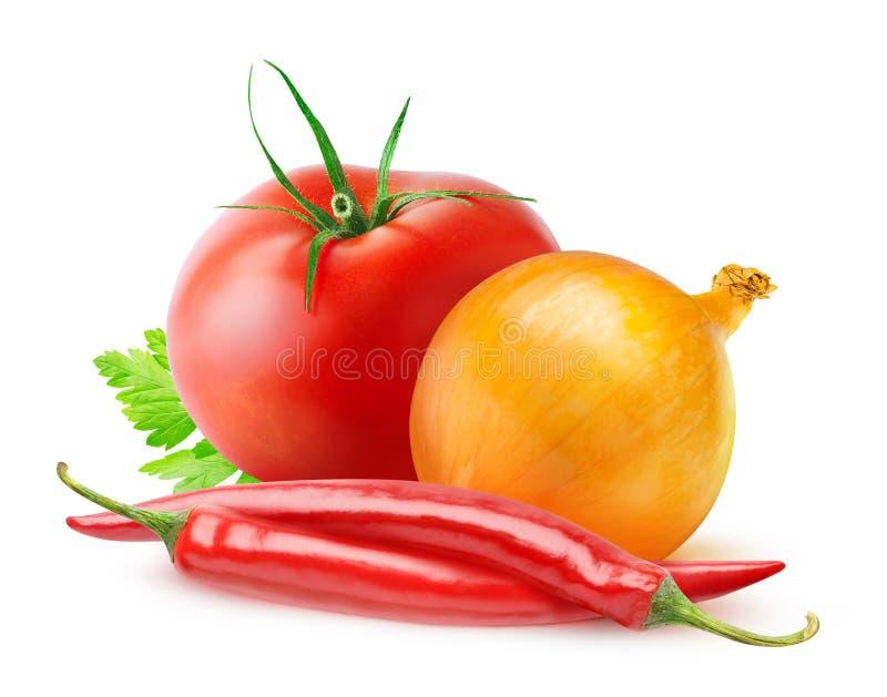 Ingredienti della salsa al pomodoro fotografia stock