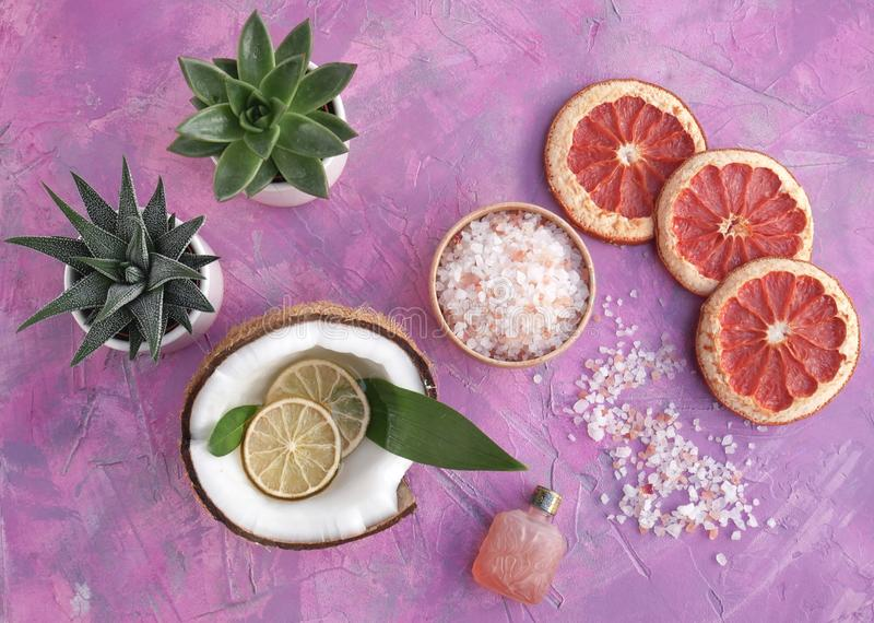 Ingredienti di nutrizione dello skincare e della stazione termale fotografie stock libere da diritti