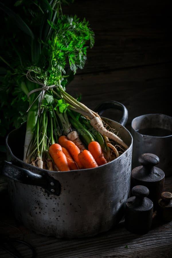 Ingredienti per brodo sano con le carote, il prezzemolo ed il porro immagini stock libere da diritti