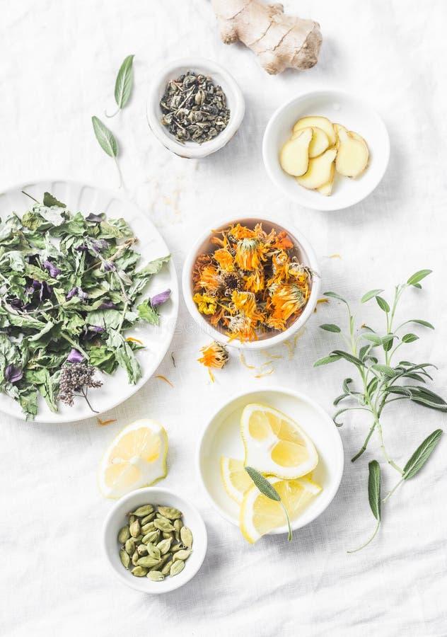 Ingredienti per il tè antiossidante su un fondo leggero, vista superiore della disintossicazione del fegato Erbe asciutte, radici immagini stock libere da diritti