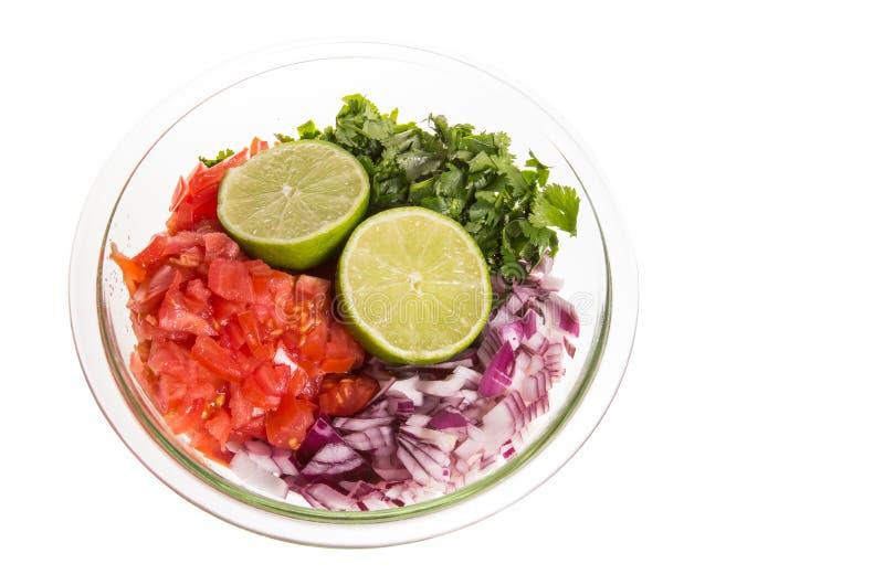 Ingredienti per salsa fresca in ciotola libera immagine stock libera da diritti